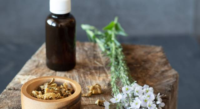 Propolis: a miraculous help from nature for our health