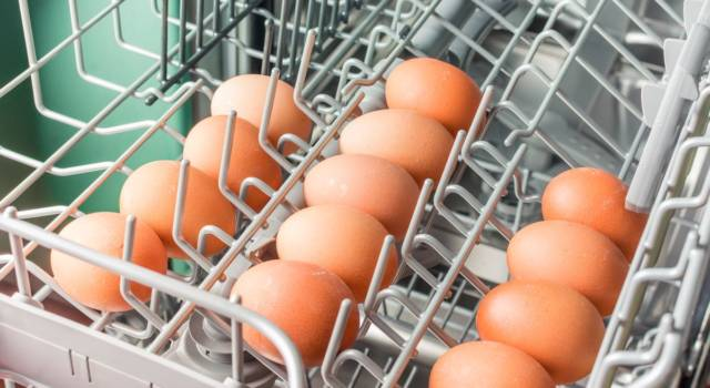 Did you know that you can cook eggs in the dishwasher?