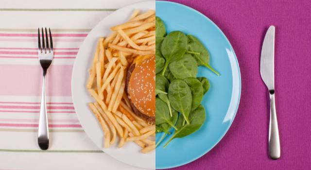 Let's find out all about the Zone Diet: program, foods and benefits!