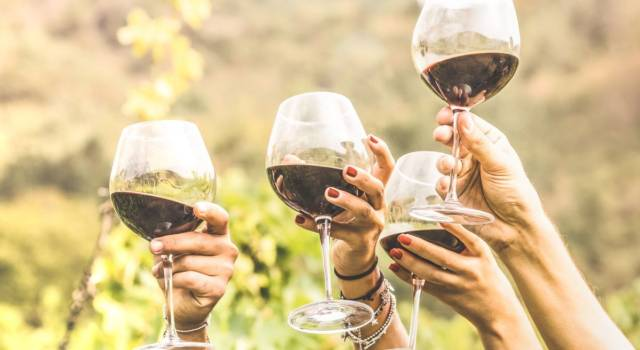 Does wine make you fat? Here's how many calories there are in a glass