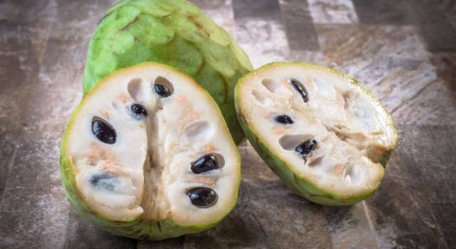 A fruit that looks like ice cream: discovering the Annona