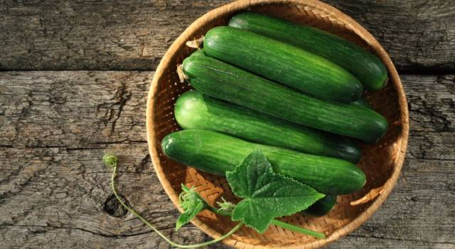 Cucumber diet: how to stay healthy and control your blood sugar