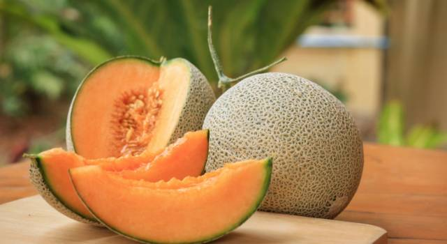 Let's find out all about melon: properties, benefits and quick (and tasty!) Recipes