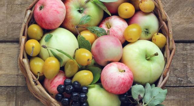 Seasonal fruit of August: here's what to choose