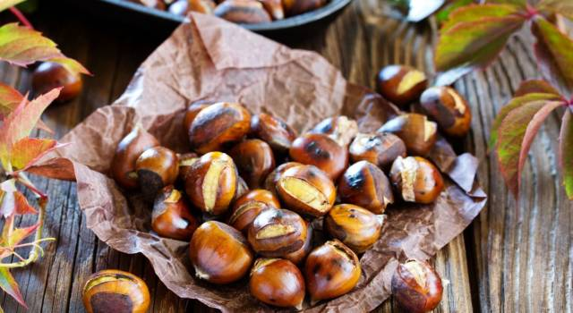 Chestnuts, what a pleasure for the palate! But why do they swell?