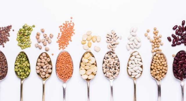 Reduce or avoid meat in the diet: how to balance the need for proteins