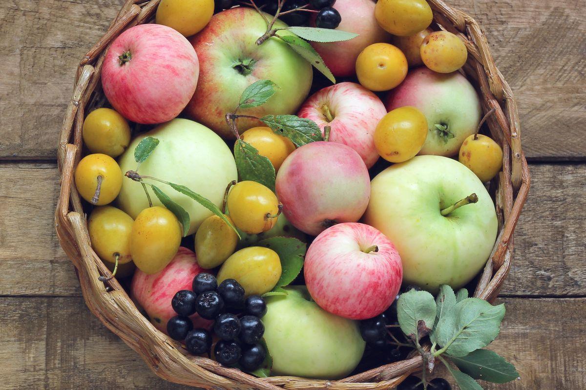Seasonal fruit August