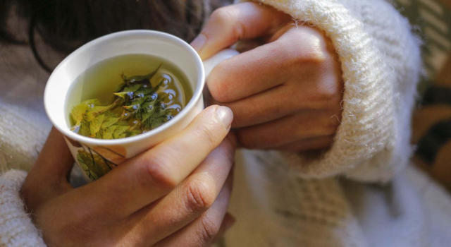 Relaxing herbs: what they are and how to use them to relieve stress