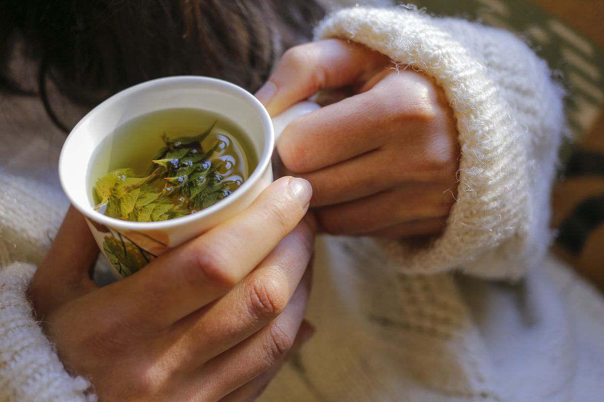 herbal tea with herbs