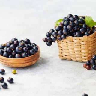 Ribes nigrum, a fruit with a thousand benefits: properties, contraindications and uses