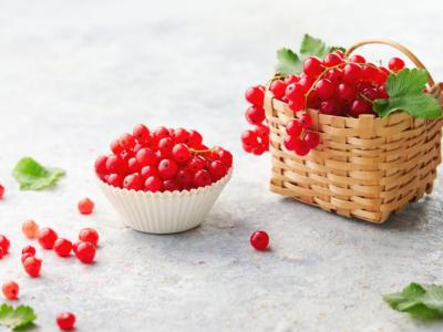 Red currant and all its amazing health properties