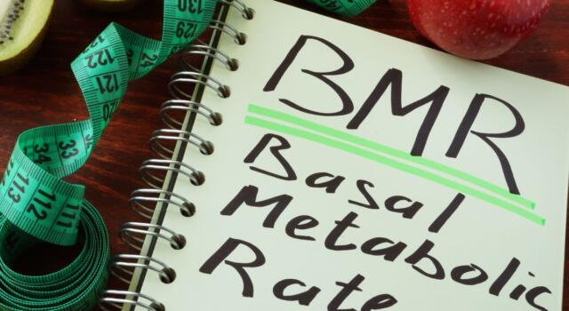 What is the basal metabolic rate and how to calculate it: useful tips